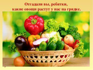 Отгадали вы, ребятки, какие овощи растут у нас на грядке.