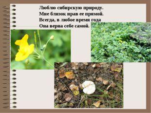 Люблю сибирскую природу. Мне близок нрав ее прямой. Всегда, в любое время год