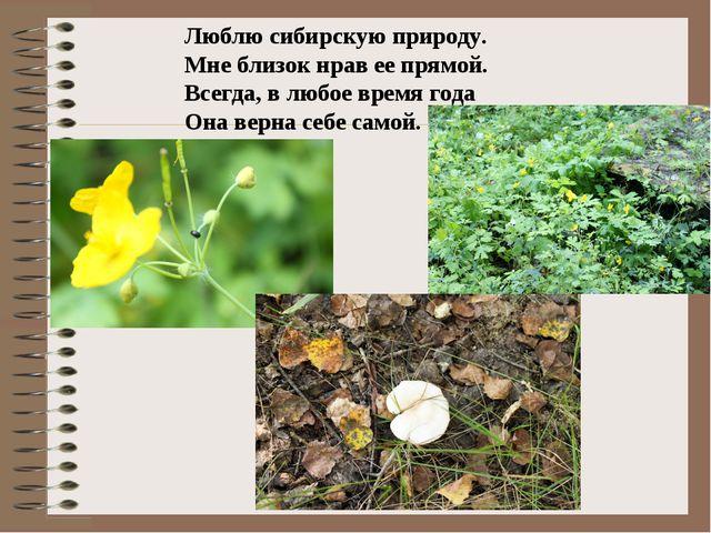 Люблю сибирскую природу. Мне близок нрав ее прямой. Всегда, в любое время год...
