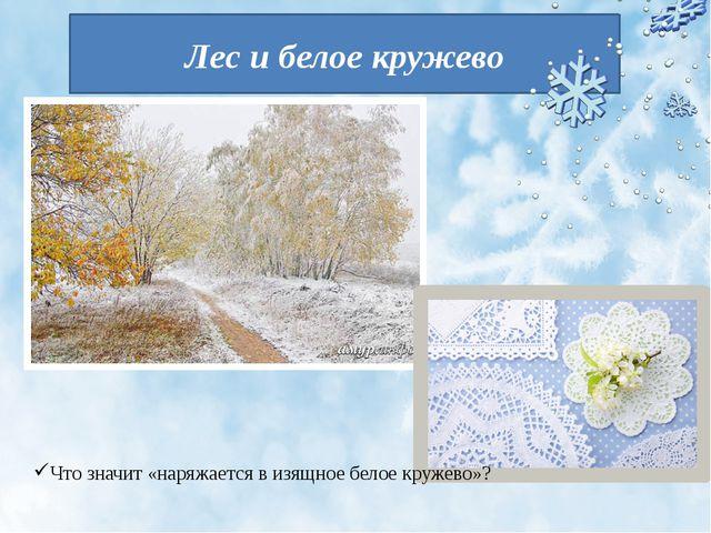 Лес и белое кружево Что значит «наряжается в изящное белое кружево»?