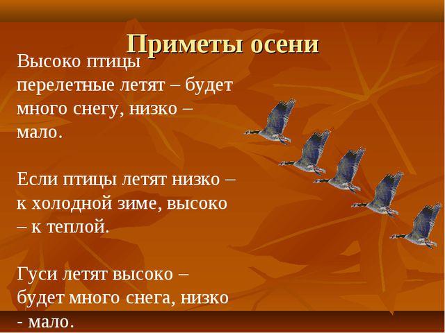 Приметы осени Высоко птицы перелетные летят – будет много снегу, низко – мало...