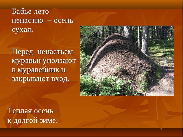 Бабье лето ненастно – осень сухая. Перед ненастьем муравьи уползают в муравей...