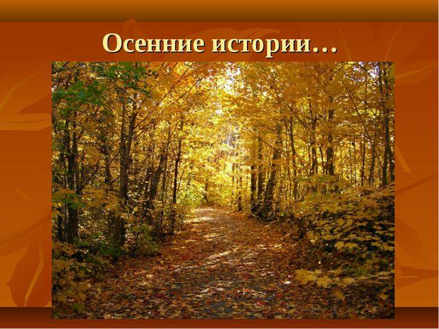 Осенние истории…