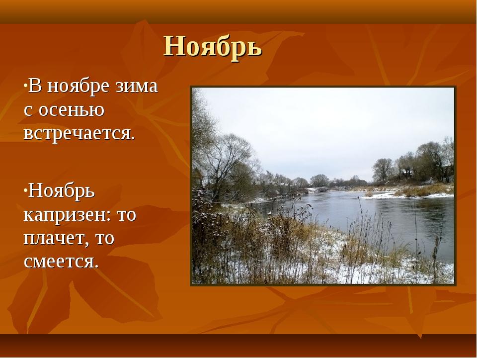Ноябрь В ноябре зима с осенью встречается. Ноябрь капризен: то плачет, то сме...