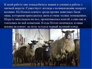 В моей работе мне понадобиться знания и умения в работе с овечьей шерсти. Сущ