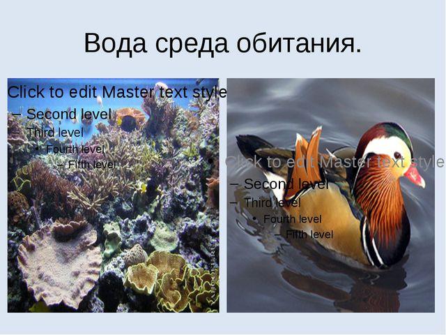 Вода среда обитания.
