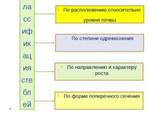 Классификация стеблей По расположению относительно уровня почвы По степени о