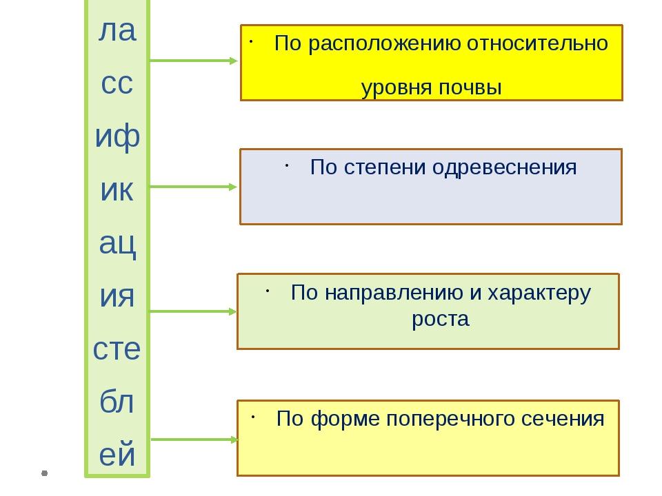 Классификация стеблей По расположению относительно уровня почвы По степени о...