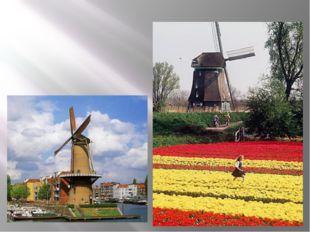 Нидерланды - страна тюльпанов, мельниц, сыров, фестивалей.