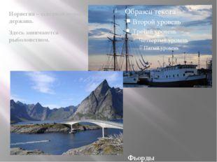 Норвегия – северная морская держава. Здесь занимаются рыболовством. Фьорды