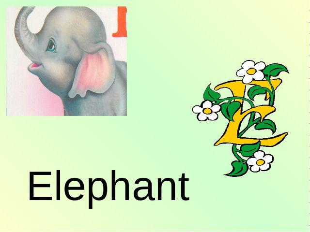 Elephant http://urazimbetov.jimdo.com/