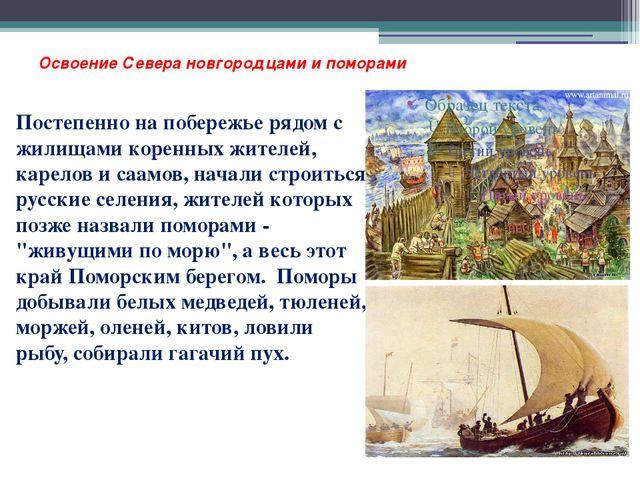 Освоение Севера новгородцами и поморами Постепенно на побережье рядом с жилищ...