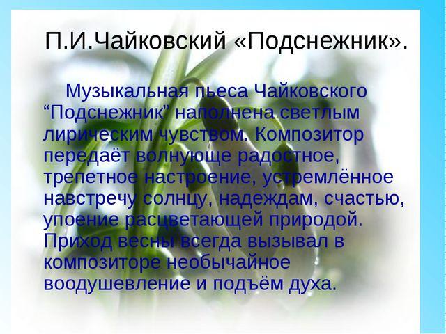 """П.И.Чайковский «Подснежник». Музыкальная пьеса Чайковского """"Подснежник"""" напол..."""