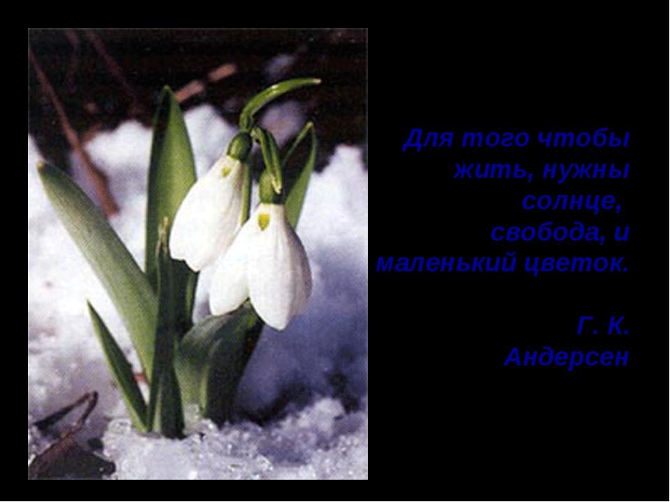 Для того чтобы жить, нужны солнце, свобода, и маленький цветок. Г. К. Андерсен