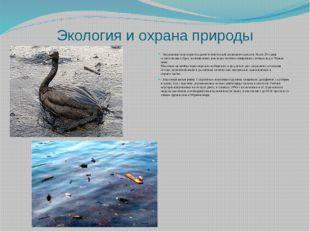 Экология и охрана природы - Загрязнение вод моря отходами человеческой жизнед