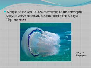 Медуза более чем на 90% состоит из воды; некоторые медузы могут вызывать боле