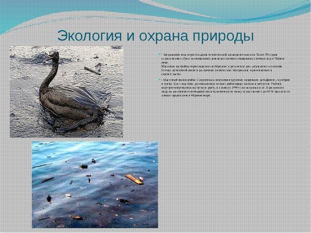 Экология и охрана природы - Загрязнение вод моря отходами человеческой жизнед...