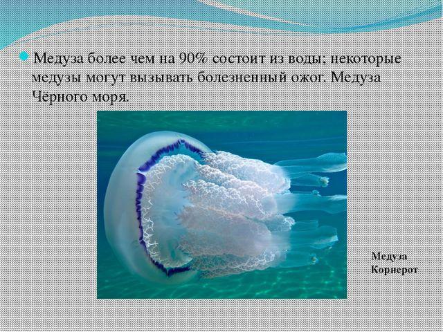 Медуза более чем на 90% состоит из воды; некоторые медузы могут вызывать боле...