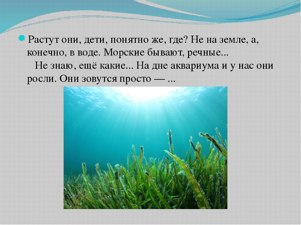 Растут они, дети, понятно же, где? Не на земле, а, конечно, в воде. Морские б...