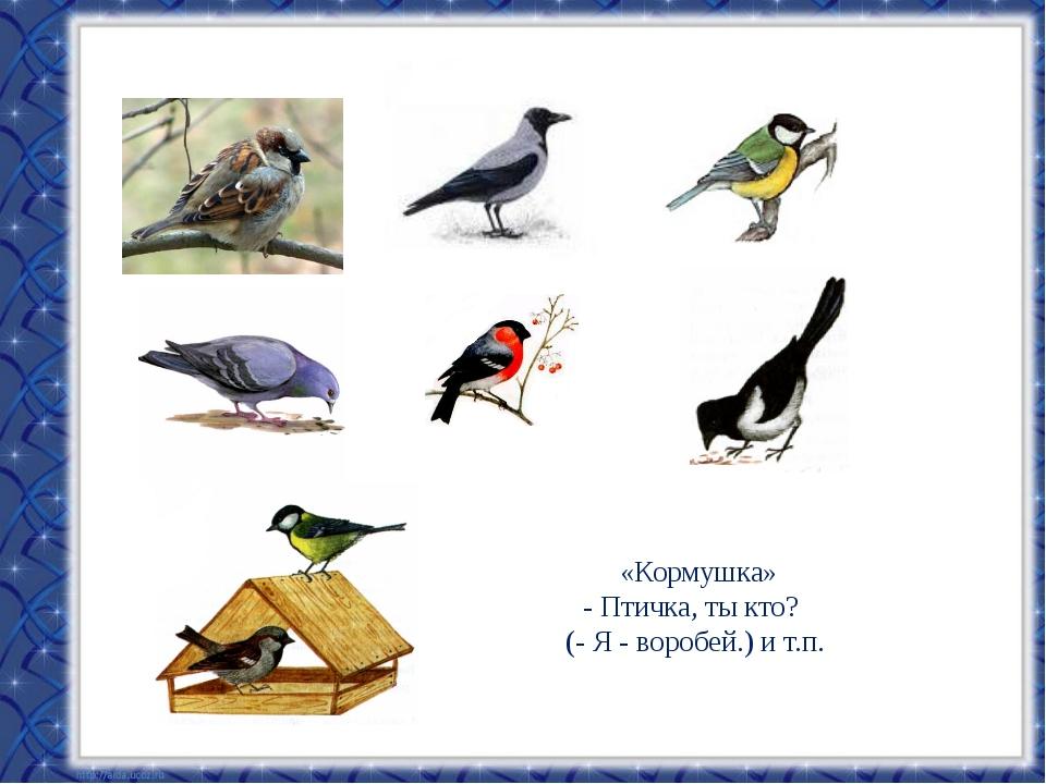 «Кормушка» - Птичка, ты кто? (- Я - воробей.) и т.п.