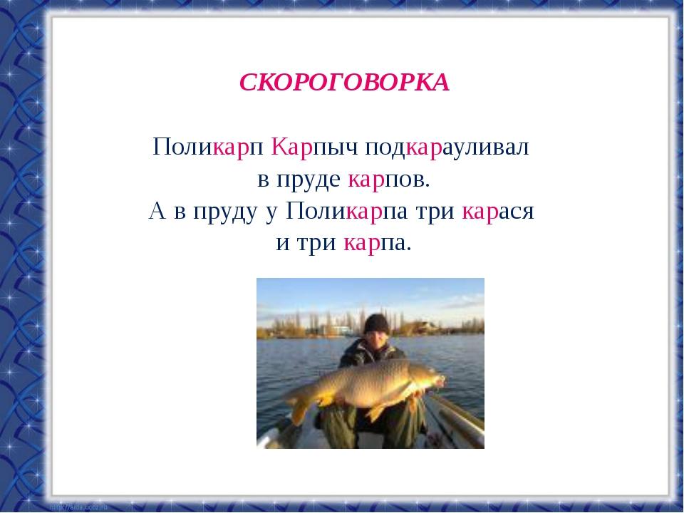 СКОРОГОВОРКА Поликарп Карпыч подкарауливал в пруде карпов. А в пруду у Полика...