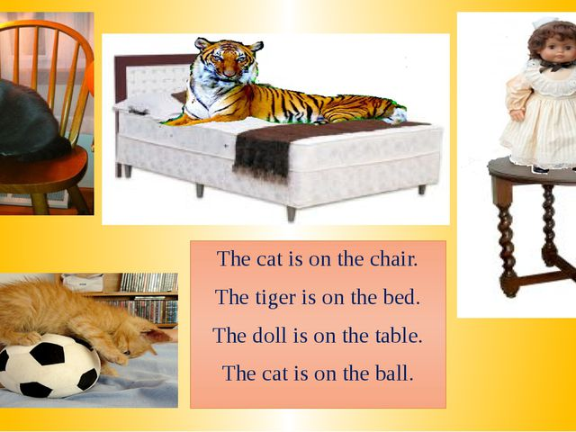 The cat is on the chair. The tiger is on the bed. The doll is on the table. T...