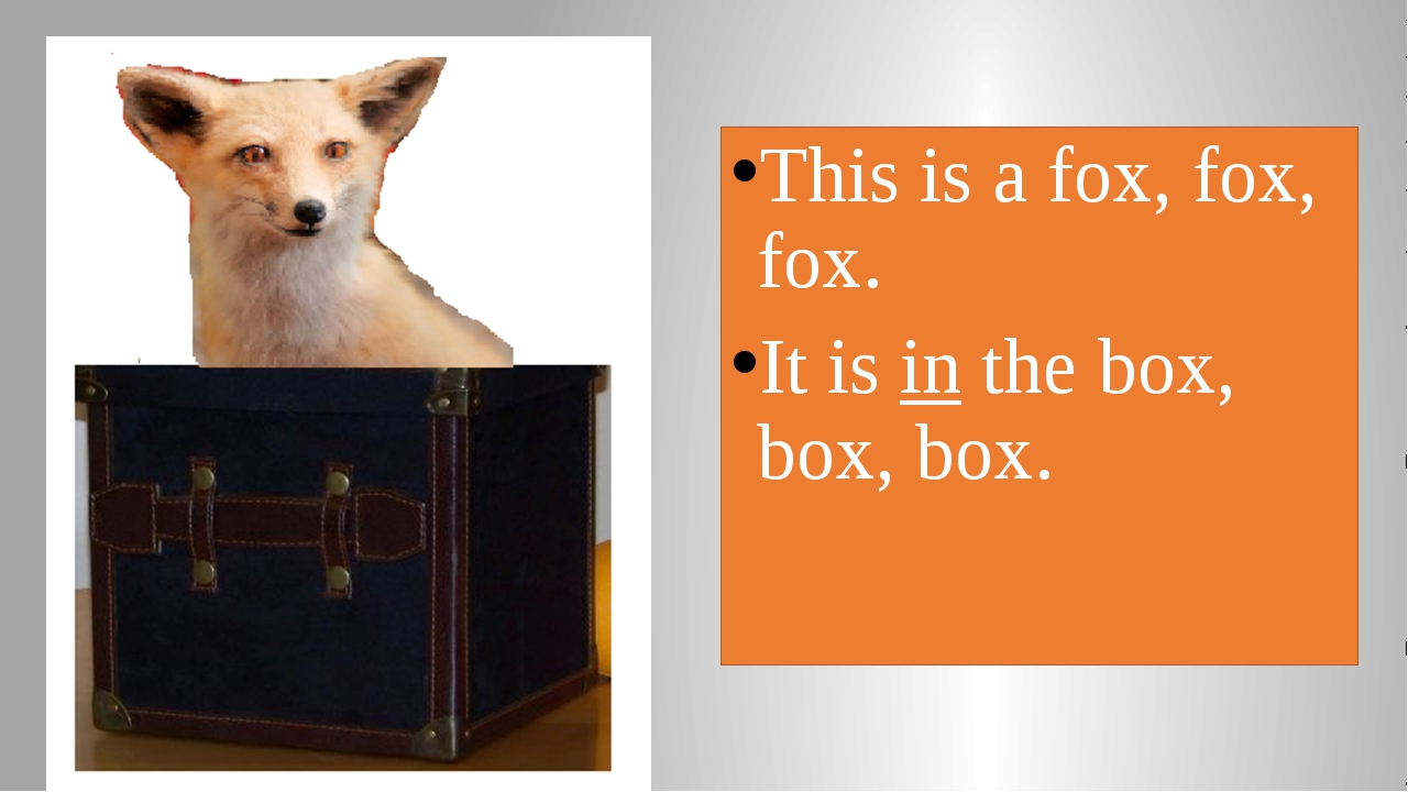 This is a fox, fox, fox. It is in the box, box, box.