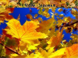 Чудо - листья