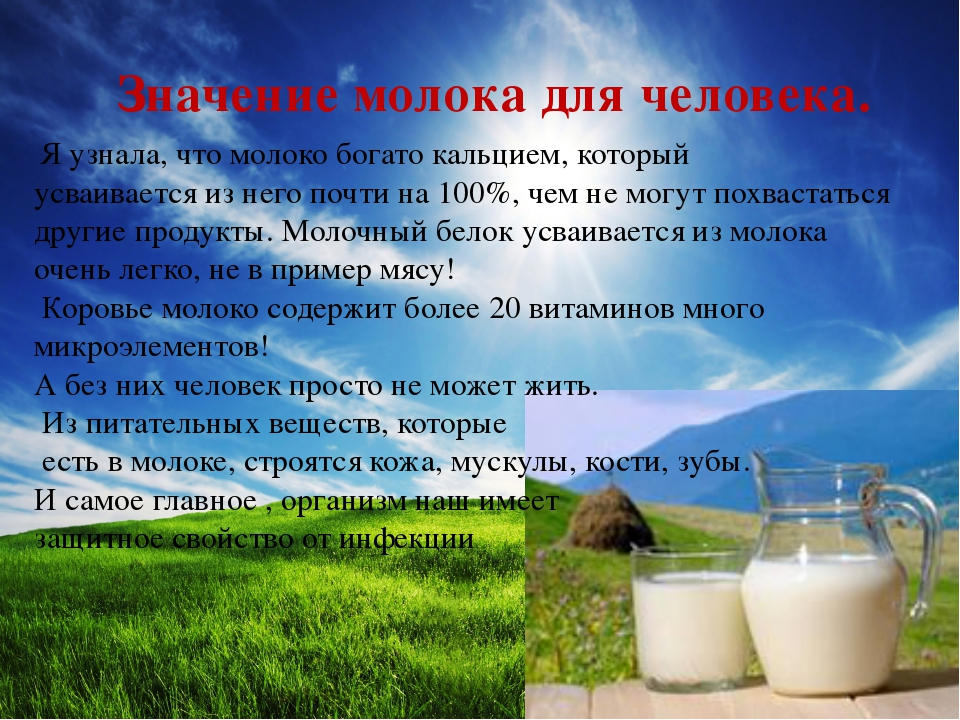 Значение молока для человека. Я узнала, что молоко богато кальцием, который...