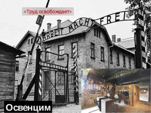 Ламсдорфский лагерь Штутгофский концлагерь Заксенхаузен концлагерь Дахау Флос