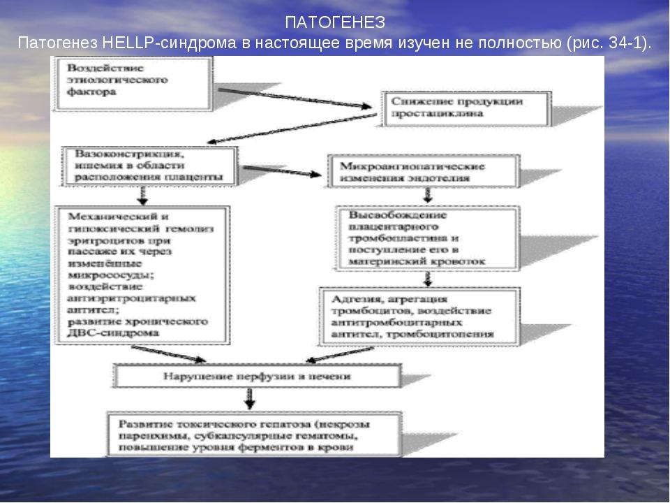 ПАТОГЕНЕЗ Патогенез HELLP-синдрома в настоящее время изучен не полностью (рис...