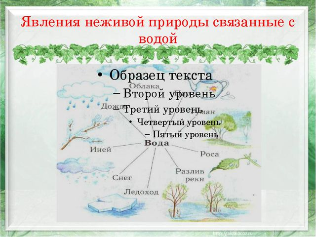 Явления неживой природы связанные с водой