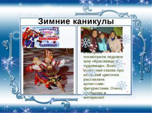 Зимние каникулы Впервые мы с мамой и бабулей посмотрели ледовое шоу «Красави