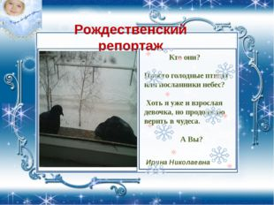Рождественский репортаж Кто они? Просто голодные птицы или посланники небес?