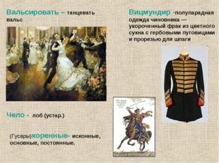 Вицмундир -полупарадная одежда чиновника — укороченный фрак из цветного сукна