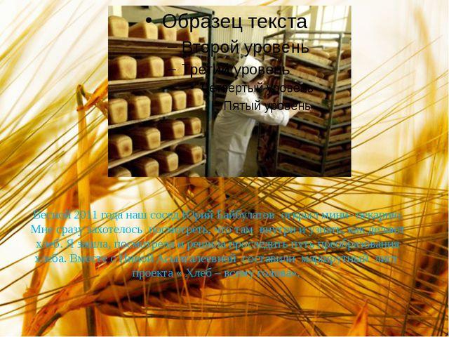 Весной 2011 года наш сосед Юрий Байбулатов открыл мини- пекарню. Мне сразу за...