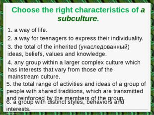 Choose the right characteristics of a subculture. 1. a way of life. 2. a way