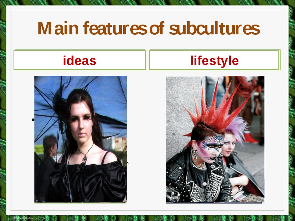 Name members of subcultures