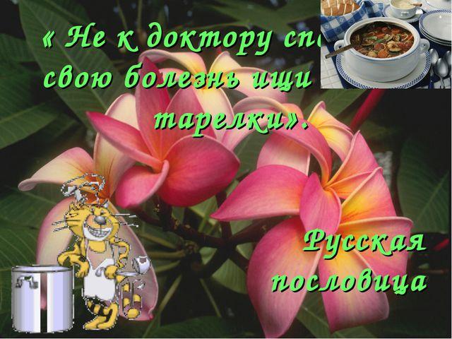 « Не к доктору спеши, а свою болезнь ищи на дне тарелки». Русская пословица