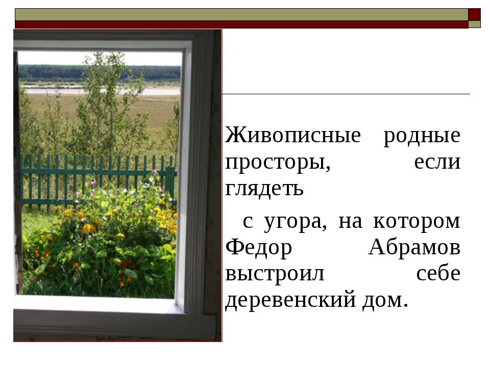 Живописные родные просторы, если глядеть с угора, на котором Федор Абрамов...