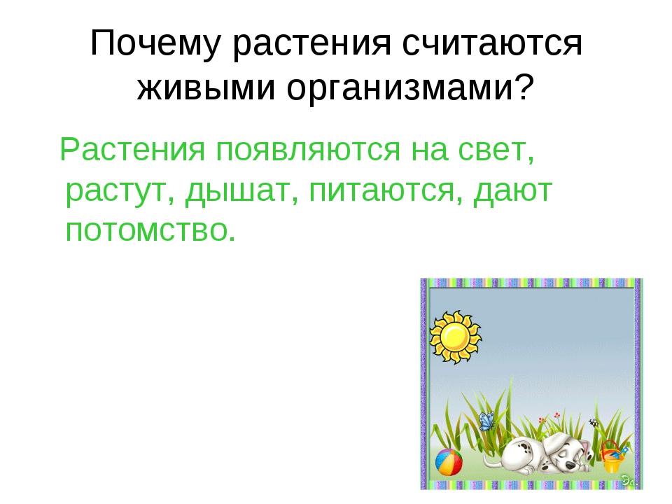 Почему растения считаются живыми организмами? Растения появляются на свет, ра...
