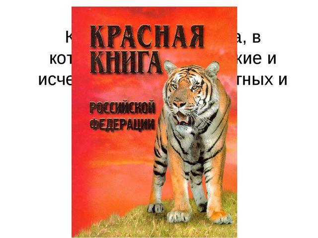Как называется книга, в которую занесены редкие и исчезающие виды животных и...