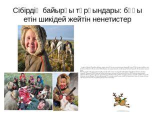 Сібірдің байырғы тұрғындары: бұғы етін шикідей жейтін ненетистер ненетис (N