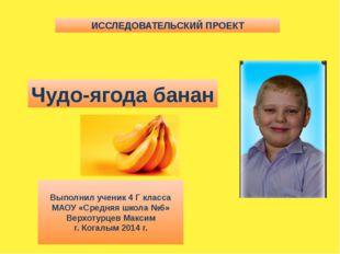 ИССЛЕДОВАТЕЛЬСКИЙ ПРОЕКТ Чудо-ягода банан Выполнил ученик 4 Г класса МАОУ «Ср
