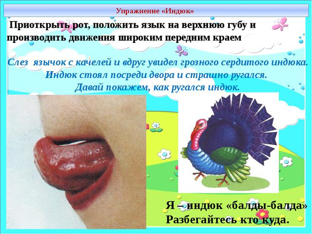 Упражнение «Индюк» Приоткрыть рот, положить язык на верхнюю губу и производит...