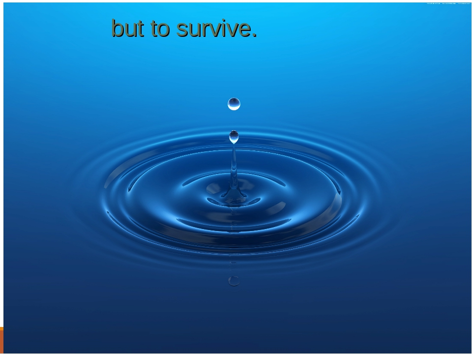 but to survive.