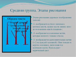 Средняя группа. Этапы рисования Этапы рисования деревьев (изображение тополя)