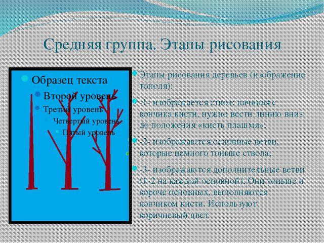 Средняя группа. Этапы рисования Этапы рисования деревьев (изображение тополя)...