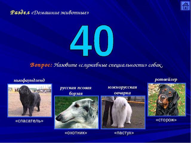 Раздел «Домашние животные» Вопрос: Назовите «служебные специальности» собак....