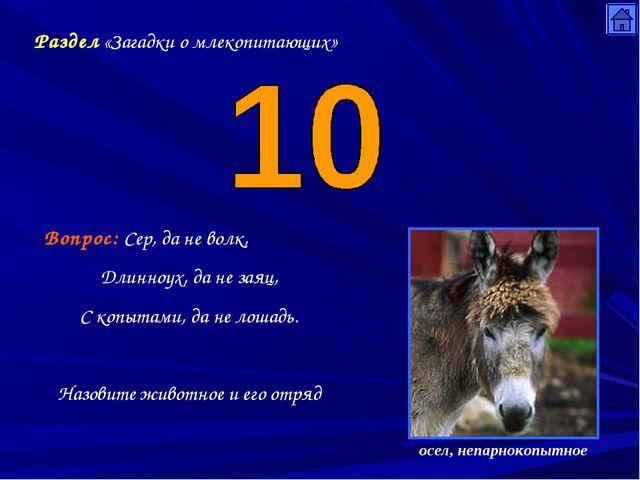 Раздел «Загадки о млекопитающих» Вопрос: Сер, да не волк, Длинноух, да не зая...